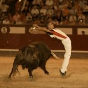 Ceñido recorte en la final del Campeonato de España en Las Ventas